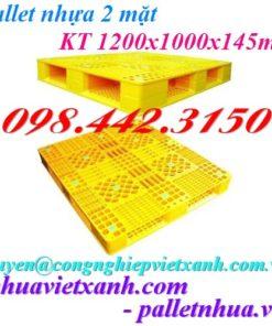 Pallet nhựa 2 mặt PL02HG 1200x1000x145mm